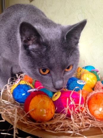 eine bunte Eierei - alles meins :)