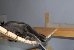 Schlafen kann man hier auch gut :)